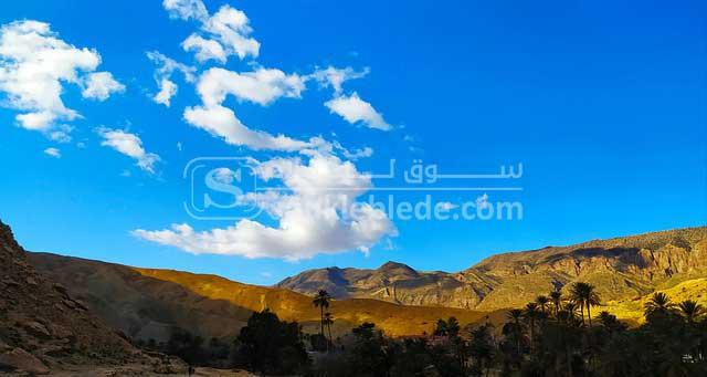 صورة من ولاية بسكرة
