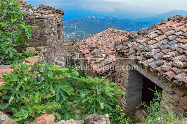 صورة من بلاد القبائل