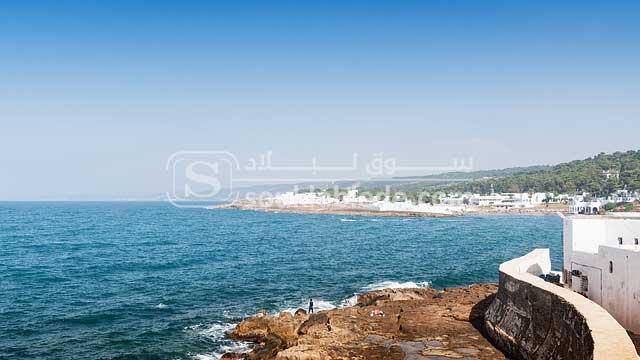 صورة من ولاية تيبازة